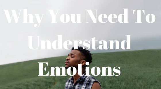 why you need to understand emotions